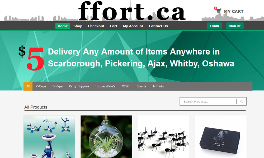 eCommerce Web Development Saskatoon